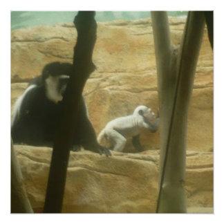 猿の演劇ポスター ポスター
