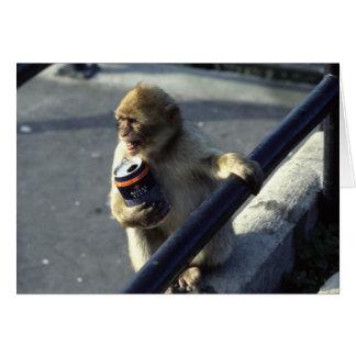 猿の飲むこと カード