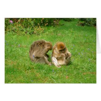 猿カード カード