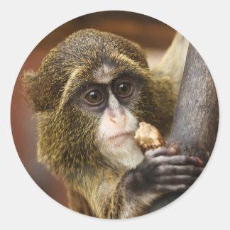 猿 ラウンドシール