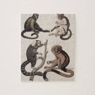 猿(色のlitho) ジグソーパズル