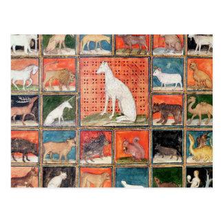 獣の特性: ほ乳類 ポストカード