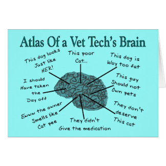 獣医の技術の頭脳の地図書 カード