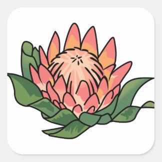 王プロテアの花 スクエアシール