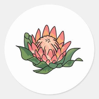 王プロテアの花 ラウンドシール
