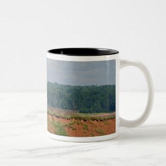 王子のエドワード北のUmberlandの灯台 ツートーンマグカップ