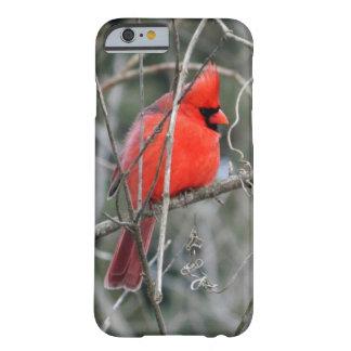 王室ので赤く基本的なiPhone 6の箱 Barely There iPhone 6 ケース