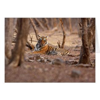 王室のなベンガルトラ、Ranthambhorの国立公園、 カード