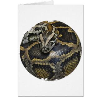 """""""王室のな大蛇"""" カード"""