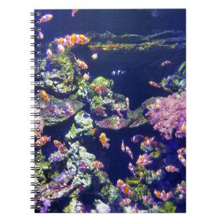 珊瑚のまわりの水中にオレンジピエロの魚 ノートブック