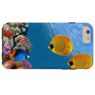 珊瑚のコロニー礁のiPhone6ケース Tough iPhone 6 Plus ケース