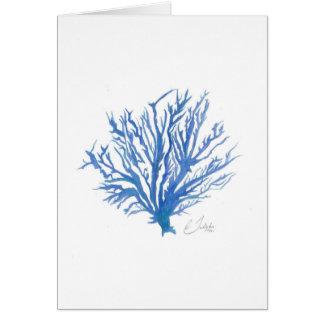 珊瑚の挨拶状 カード
