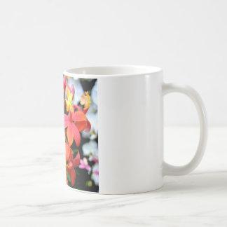 珊瑚のEpidendrumの蘭のマグ コーヒーマグカップ