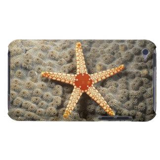 珊瑚上のヒトデ Case-Mate iPod TOUCH ケース