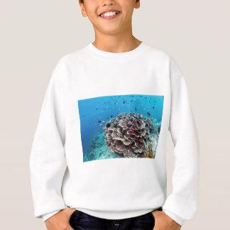 珊瑚島 スウェットシャツ