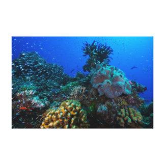珊瑚海のキャンバスのプリント キャンバスプリント