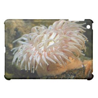 珊瑚礁のアネモネのiPadの場合 iPad Miniケース