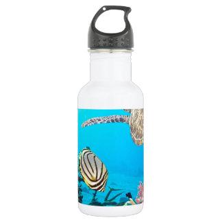 珊瑚礁のカメNaturescape ウォーターボトル