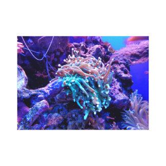 珊瑚礁のキャンバス キャンバスプリント