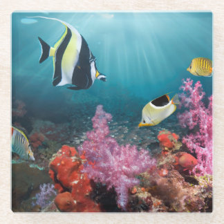 珊瑚礁の景色|のMoorishの偶像 ガラスコースター