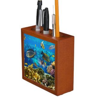珊瑚礁の熱帯魚の写真 ペンスタンド