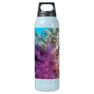 珊瑚礁の生息地 断熱ウォーターボトル