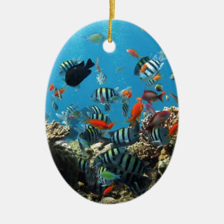 珊瑚礁の魚Naturescape セラミックオーナメント