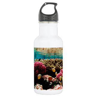 珊瑚礁1 ウォーターボトル