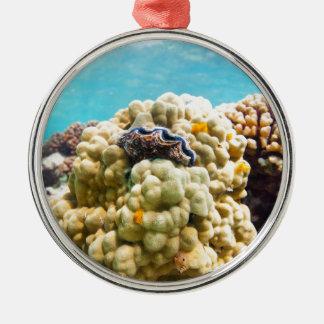 珊瑚礁 メタルオーナメント
