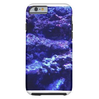 珊瑚 ケース