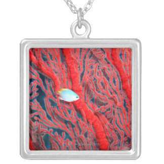 珊瑚 シルバープレートネックレス
