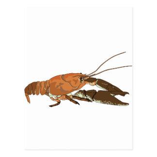 現実的なCrayfishかCrawdad ポストカード