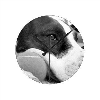 球が付いているかわいく悲しい見るピットブル犬の白黒 ラウンド壁時計