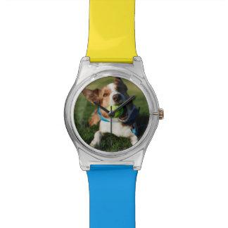 球と遊んでいる犬 腕時計