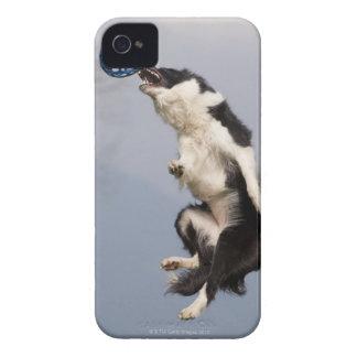 球の最高をつかまえる直前のボーダーコリー Case-Mate iPhone 4 ケース