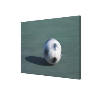 球 キャンバスプリント