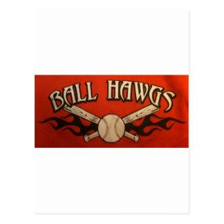 球Hawgs ポストカード