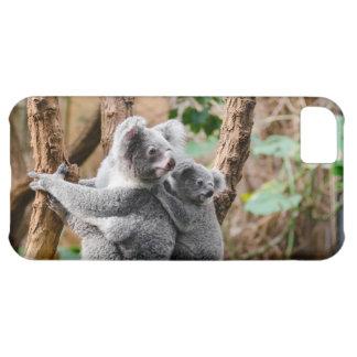 甘いコアラは木に関係します iPhone5Cケース