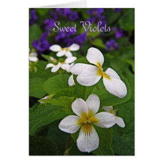 甘いバイオレット カード