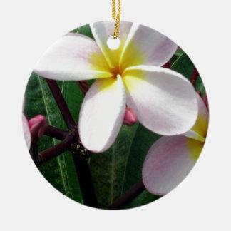 甘いピンクおよび黄色いプルメリアの花 セラミックオーナメント