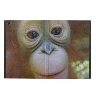 甘いベビーのオランウータン iPad AIRケース