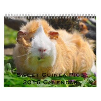 甘いモルモット2016のカレンダー カレンダー