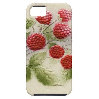 甘いヴィンテージのラズベリーの電話箱 iPhone SE/5/5s ケース