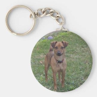 甘い犬 キーホルダー