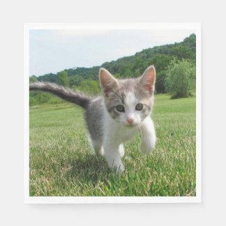 甘い猫 スタンダードランチョンナプキン