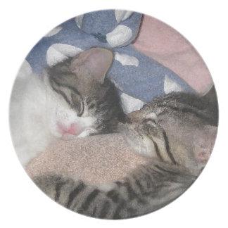 甘い睡眠の子ネコ プレート