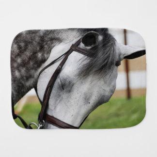 甘いAppaloosaの馬 バープクロス