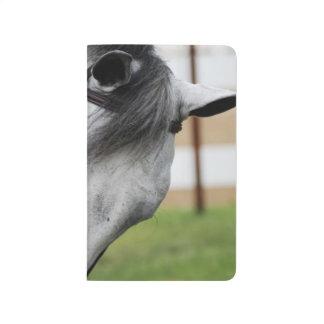 甘いAppaloosaの馬 ポケットジャーナル
