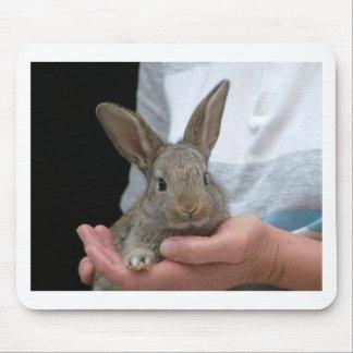 甘く小さいウサギ マウスパッド