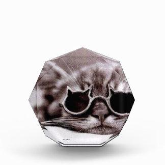 生きた最もクールな猫-アクリル賞 表彰盾